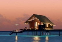 Daily Escapes / Unexpected surprises are at every turn! Take a tour of exotic daily escapes to unwind and relax.