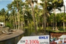 Bali / All packages from Bali