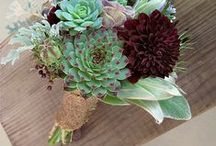 Wedding - Bouquets / Collection of possible wedding bouquets / by Macie Hummer