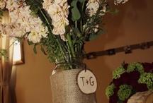 Wedding / by Gina Bloom