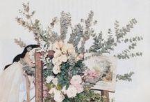 // in full bloom // / by roberta bueso