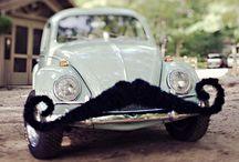 mustaches / by Halie Schroder