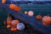 Halloween / by Erynn Wilcox
