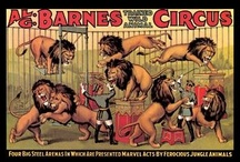 Vintage Circus Poster Wall Graphics / http://www.walls360.com/circus-wall-graphics-s/1943.htm