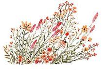 Watercolor - Aquarelle