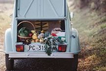 English Country by Sorbet Living / my Sussex style