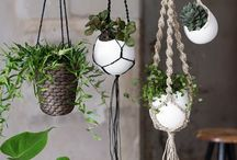 BOTANICAL BLISS | DECOR / Let your interior grow. Make use of plants, herbs or even trees to create an indoor urban jungle.