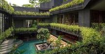 Roof gardens / Explore the best roof gardens on Dezeen, from a lush oasis on the roof of a Sydney penthouse to a tranquil rooftop courtyard complete with lotus pond in India.