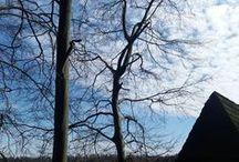 Bad Herrenalb / Alles mögliche über Bad Herrenalb im Nordschwarzwald für Touristen und Einheimische  Ich bin Daniela Walch und blogge auf http://buchvogel.blogspot.com Buch-Rezensionen
