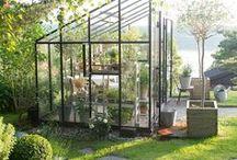 /greenhouse
