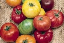 Vegetables / by Swallowtail Garden Seeds