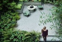 [ Home ] ✪ Terrasse & Jardin . Garden & Terrace