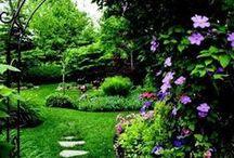 Mysterious & Romantic Gardens