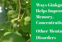 Memory Loss / Share your pins related to natural therapies and home care solutions for improving memory. No spam or adult contents. All unrelated pins will be deleted. Please do not repost group member's recent pins (Duplicate posts will be deleted). Please do not add more than 10 pins at a time. If you wish to be a contributor, please follow this board and leave a comment on a recent pin. Thanks! - The Complete Herbal Guide  https://thecompleteherbalguide.com
