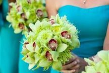 Going Green Wedding Florals / by Lavender Blue Wedding and Event Florals