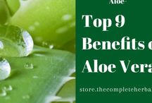 Aloe Vera / Thecompleteherbalguide.com was created to give you the truth about health, so you can live a vibrant, energetic life based on a natural approach to healing the and maintaining optimal health using alternative medicine, herbals, vitamins, fruits, and vegetables. Visit http://thecompleteherbalguide.com