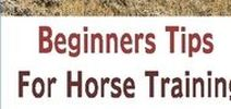 Horse Training for Beginners / Share your pins related to horses and horse training tips. No spam or adult contents. All unrelated pins will be deleted. Please do not repost group member's recent pins (Duplicate posts will be deleted). Please do not add more than 10 pins at a time. If you wish to be a contributor, please follow this board and leave a comment on a recent pin. Thanks! - The Complete Herbal Guide https://thecompleteherbalguide.com  The Complete Herbal Guide/Natural Healing Aakanksha Kirve Andy Casasanta