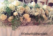 Weddings and Receptions / Weddings, Receptions and Rehearsal Dinners at Cedar Hill Farm.