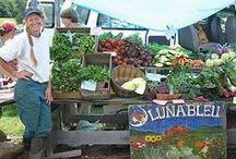 Farmer's Markets / Local farmer's markets where you can purchase locally grown, organic vegetables and meat.