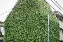4 | façade | végétale