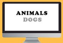 Animals - Dogs / Pictures of dogs.