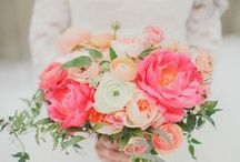 Wedding Flowers and Bouquets / Beautify your wedding with inspiring flower arrangements, unique centerpieces, and elegant bouquets. Design and style ideas to put the final touches on your perfect wedding day.