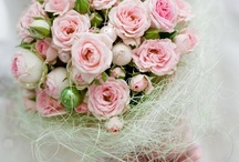 Bouquets & Flowers