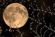 Луна в картинках / Загадочная и неизвестная соседка Земли
