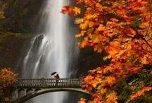 Oregon, USA / Travel the state of Oregon, USA