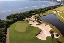 Golf Destinations / A board dedicated to golf course travel destinations.