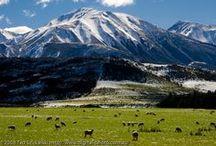 Aukland, New Zealand / Exploring the wonders of Aukland, New Zealand