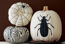 fall,halloween