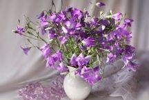 Цветочное настроение. Букеты / Букеты, букетики, композиции в вазах, вазончиках...