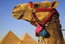Egypt / Exploring the wonders of Egypt