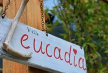 Villa Leucadia Greece / Appartments and maisonettes at Lefkada island