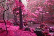 Visite en photos du monde... ...  / Les lieux que je préfère... ...  / by Caroline