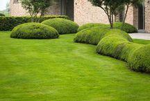 Gardens - zahrada