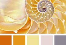 Color -barvy