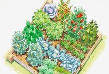 Kertész leszek