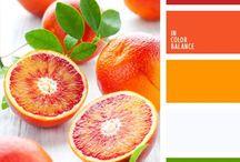 Inspiración paleta de colores para la personalidad de tu marca