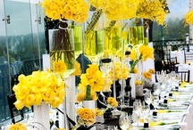 RECEPTION - Themes & Tablescapes / Ideas and inspiration for your dream wedding reception.  Inspired for reception venues at The Water Oasis: Courtyard and Tent.  Check out actual pictures of Oasis receptions!