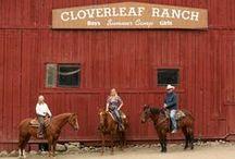 Cloverleaf Photos / Come see us soon!