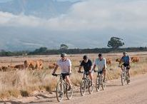 Tulbagh Getaway Specials / What The Tulbagh Boutique Heritage Hotel has to offer its travellers.