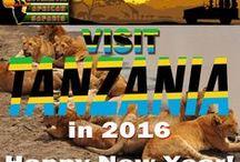 Holiday Safaris / Holiday specific Safaris