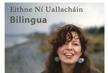 Spellbinding Irish / Contemporary, traditional, fusion, experimental