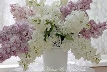 Floral Design / by Ann Rawlings