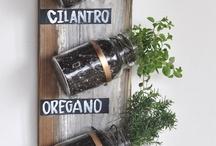 PLANT kindness, gather love!