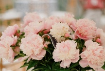 wedding florals / by Jordan McBride