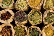 Herbs & Essential Oils / by Jackie Davis