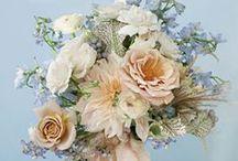 wedding bouquets / by Jordan McBride